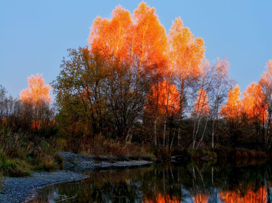 Seasons Autumn Nature wallpaper