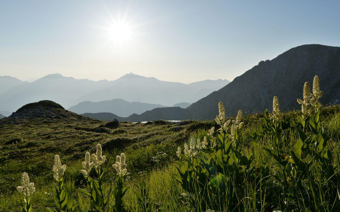 Sunlight Grass Mountains wallpaper
