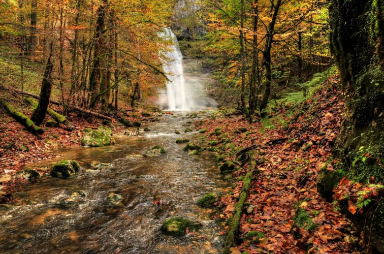 waterfall river fall forest trees nature autumn wallpaper