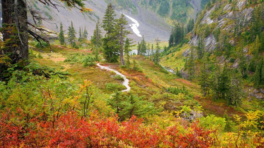 autumn mountain river trees landscape wallpaper