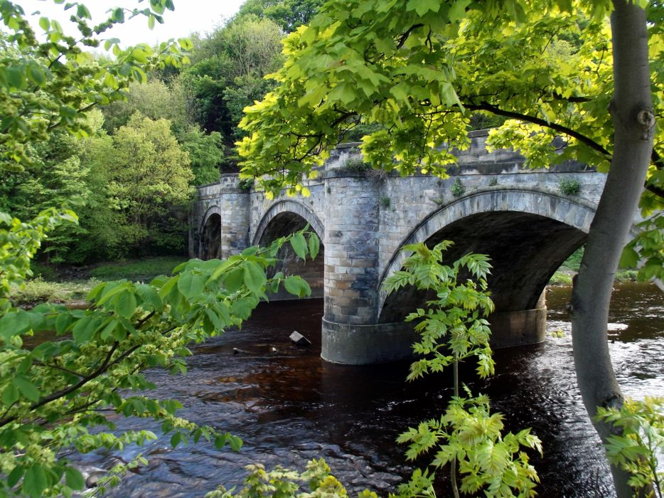 bridge river trees landscape wallpaper
