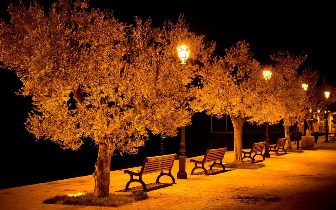 city aeYaeY street  benches  light lights bench night mood wallpaper