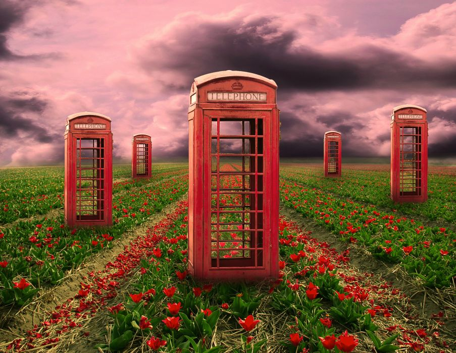 field telephone booths flowers 3d art psychedelic     f wallpaper