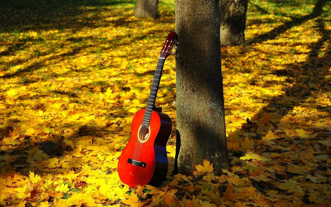 foliage autumn leaves mood guitar wallpaper