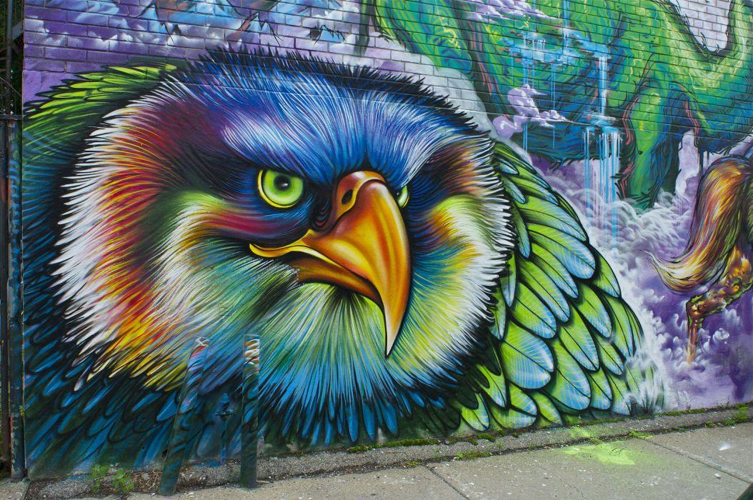 graffiti wall bird psychedelic      f wallpaper