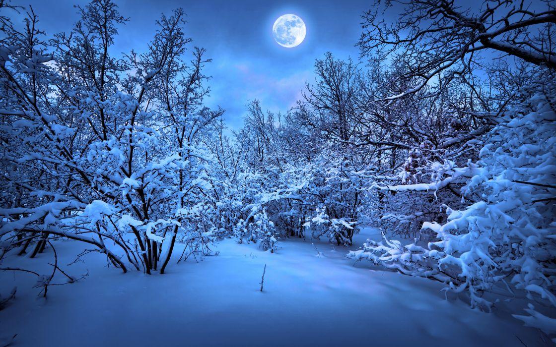 merry christmas new year magic winter snow      f wallpaper