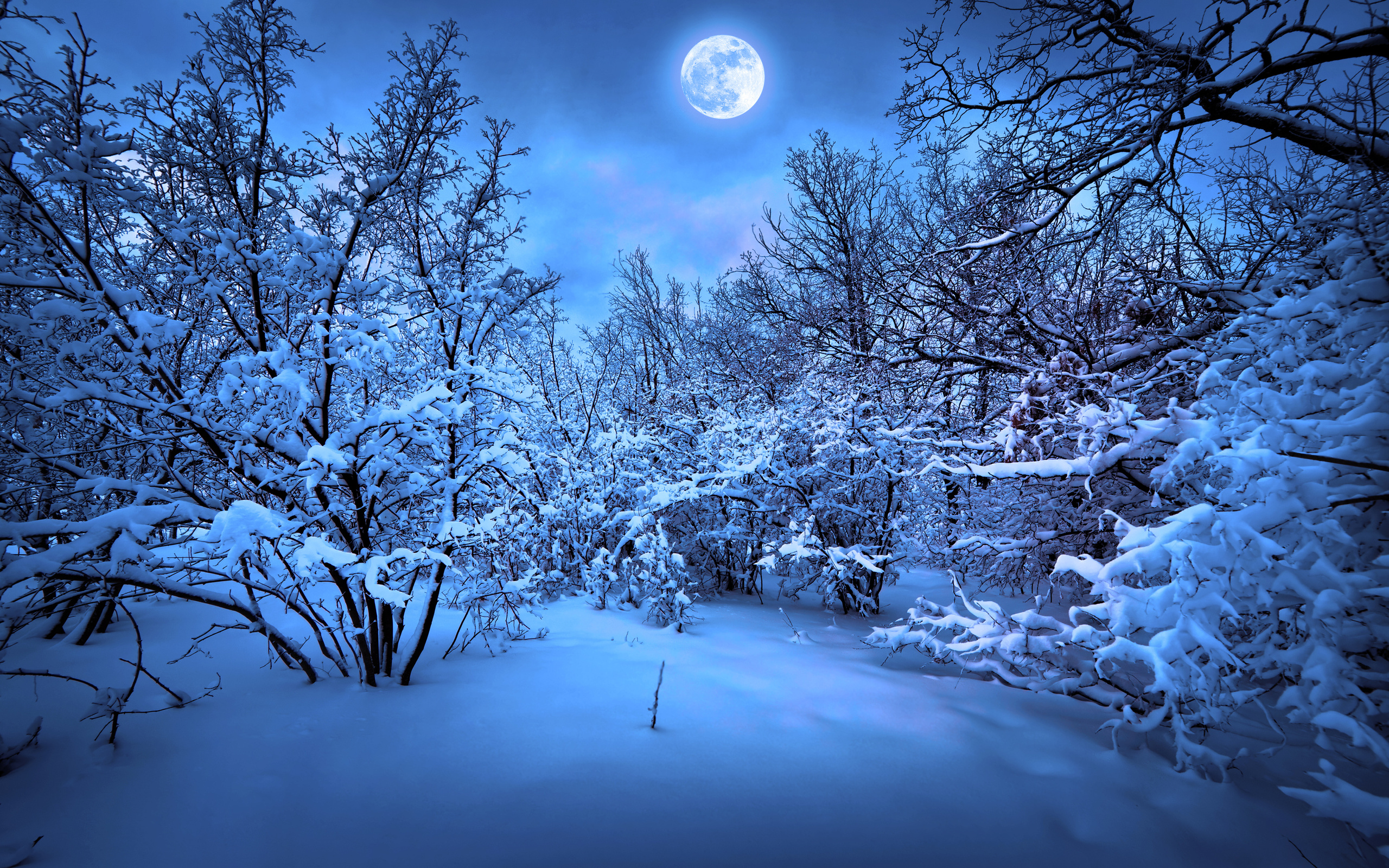 Merry Christmas New Year Magic Winter Snow F Wallpaper