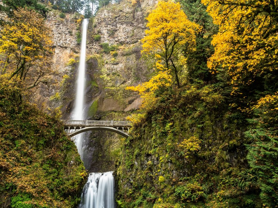 Multnomah Falls Columbia River Gorge Oregon waterfall autumn       e wallpaper