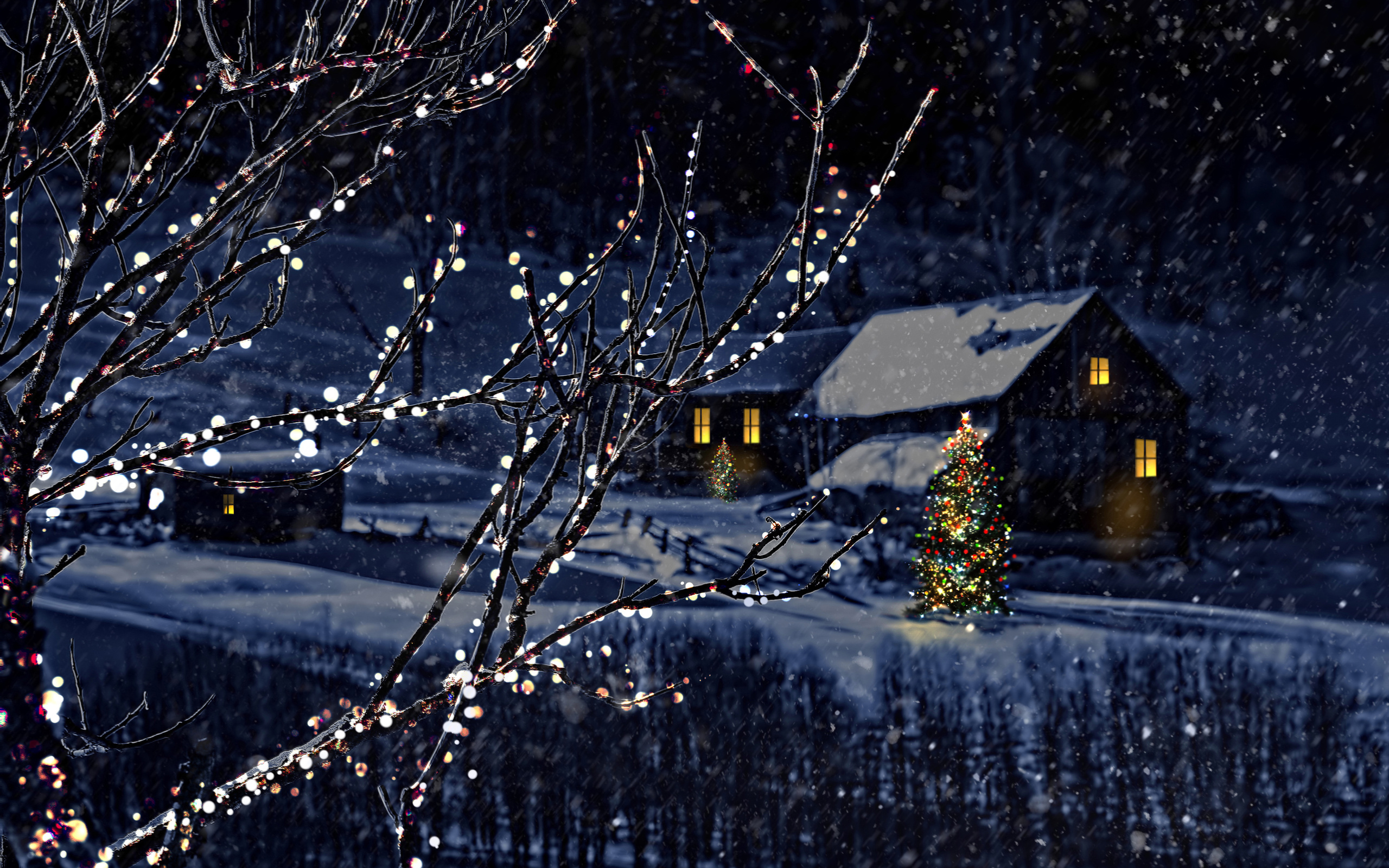 night christmas tree new year winter bokeh wallpaper 2560x1600 176640 wallpaperup