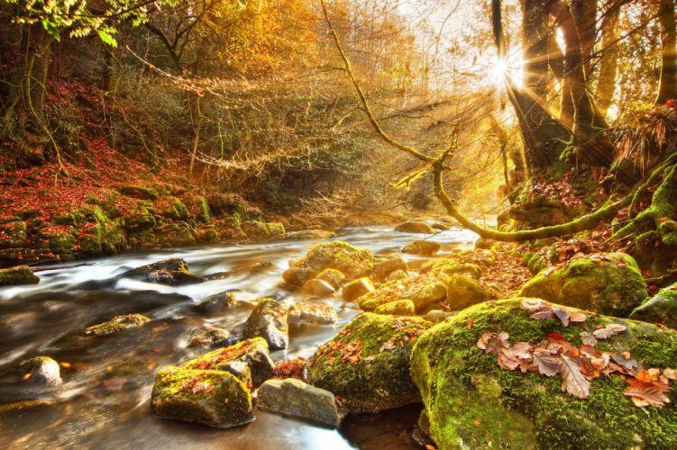 Seasons Autumn Stones River Rays of light Moss Nature wallpaper