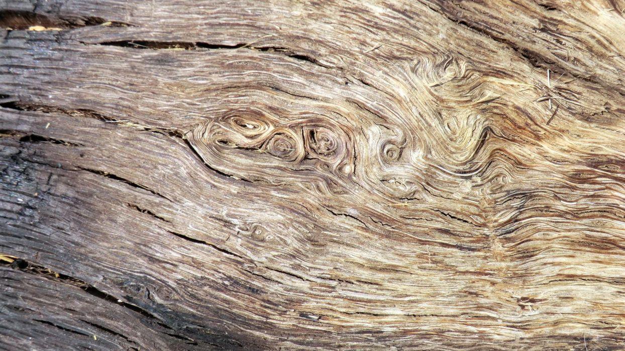 Texture Wood wallpaper