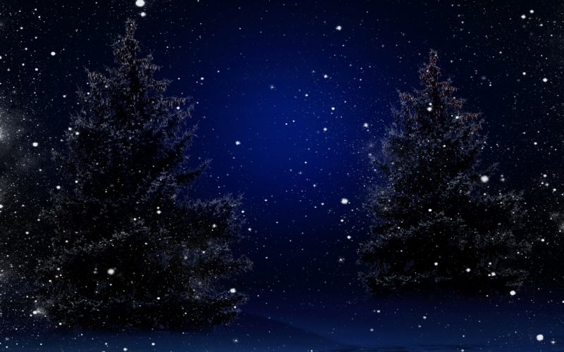 trees nature winter snow stars sky bokeh f wallpaper
