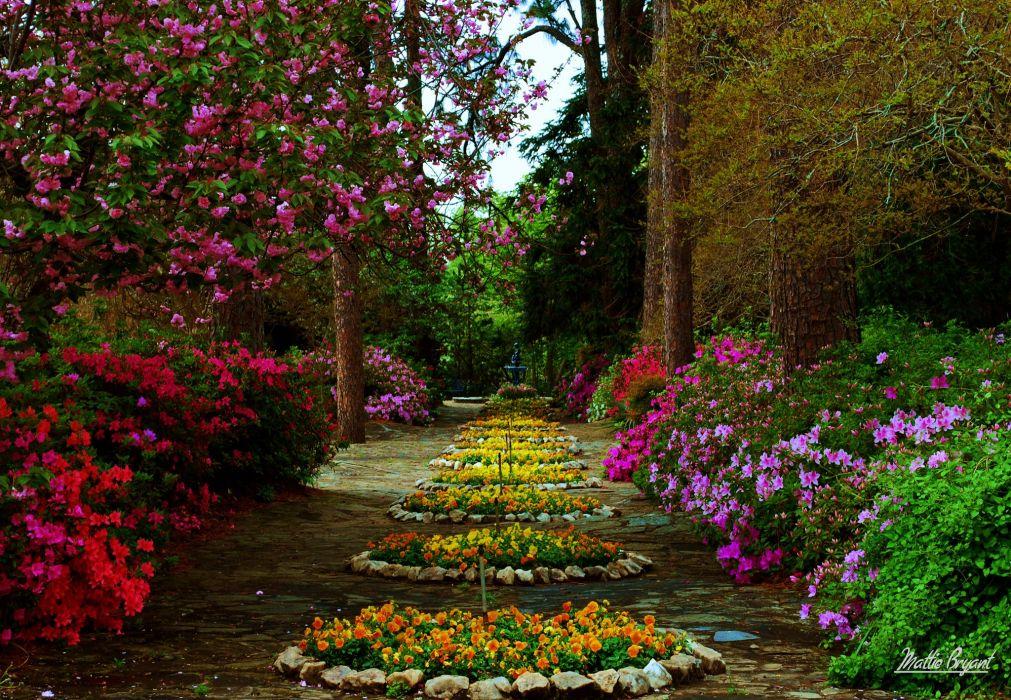 Flower Garden   d wallpaper