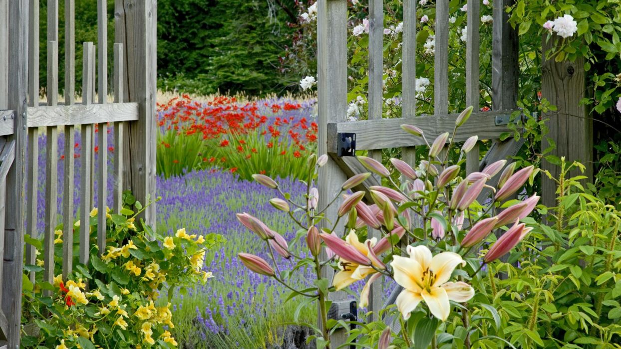 Flower Garden Fence G Wallpaper
