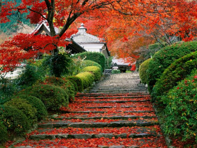 japanese garden autumn stairs wallpaper