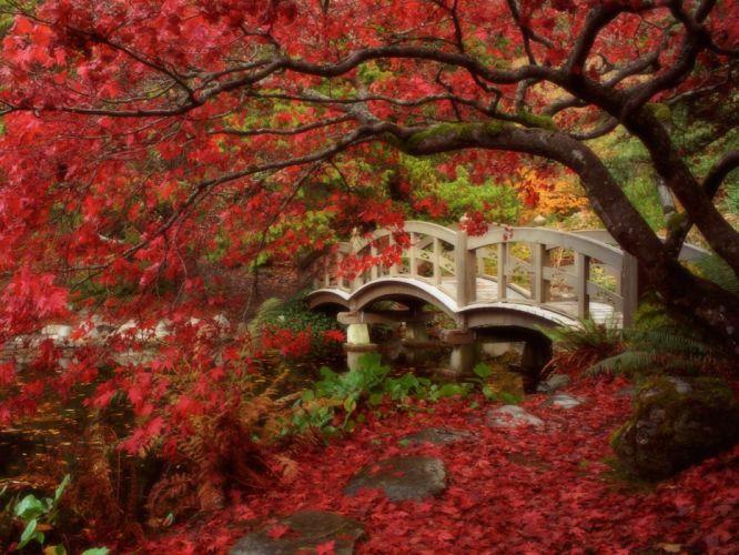 japanese garden royal roads university british columbia autumn wallpaper