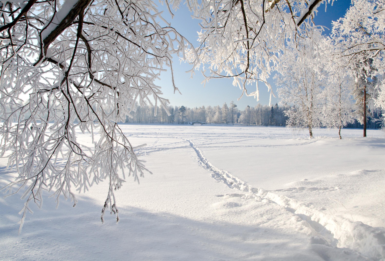 snow landscape backgrounds - photo #10