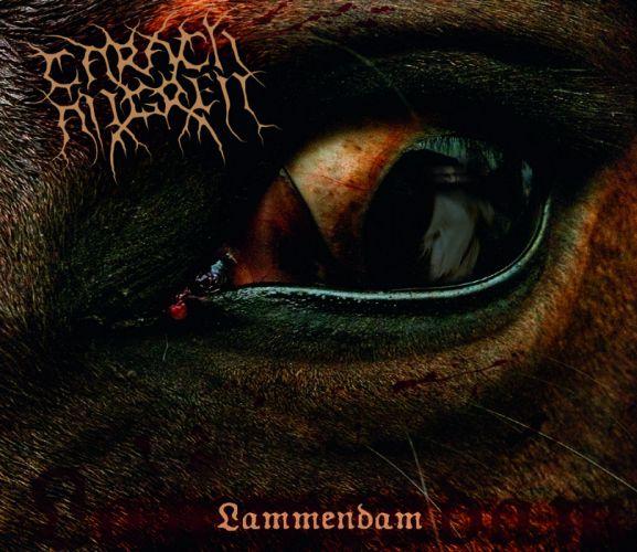 CARACH ANGREN black metal heavy dark fe wallpaper