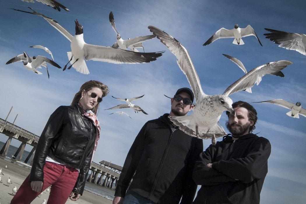 KYLSEA sludge metal heavy bird seagull wallpaper
