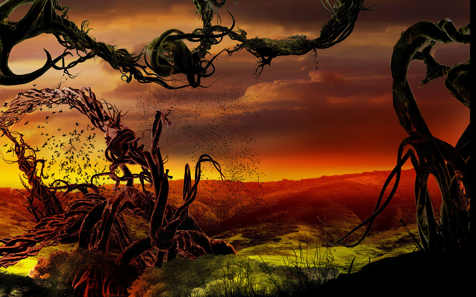 Bird tree landscape sunset psychedelic d wallpaper ...