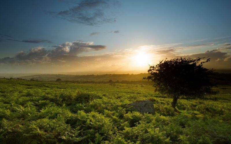 England Sourton sunset landscape wallpaper