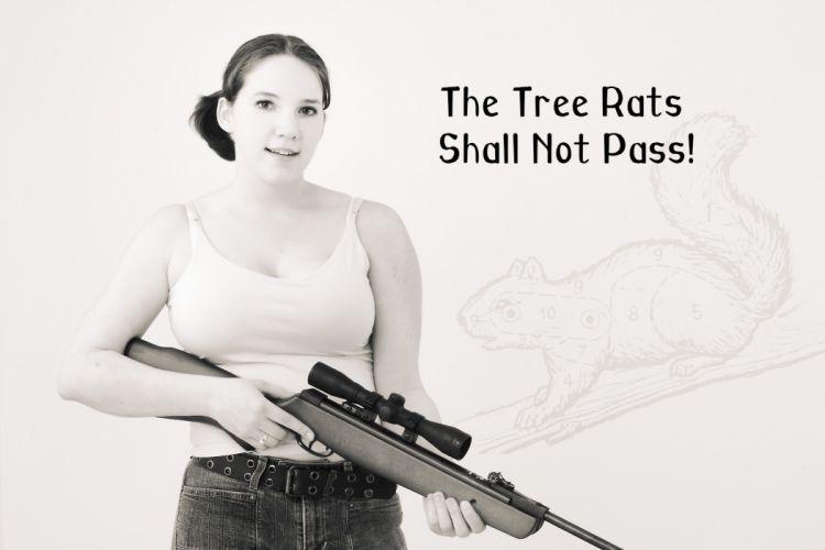 GIRLS WITH GUNS weapon gun girls poster s wallpaper