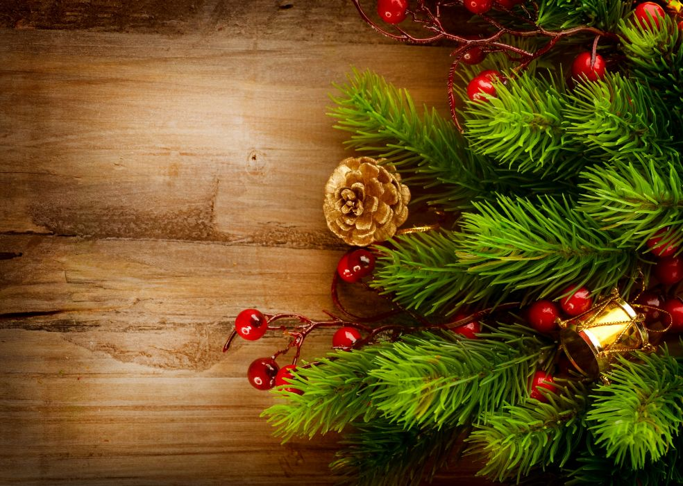 Holidays Christmas ( New year ) Branches Pine cone wallpaper
