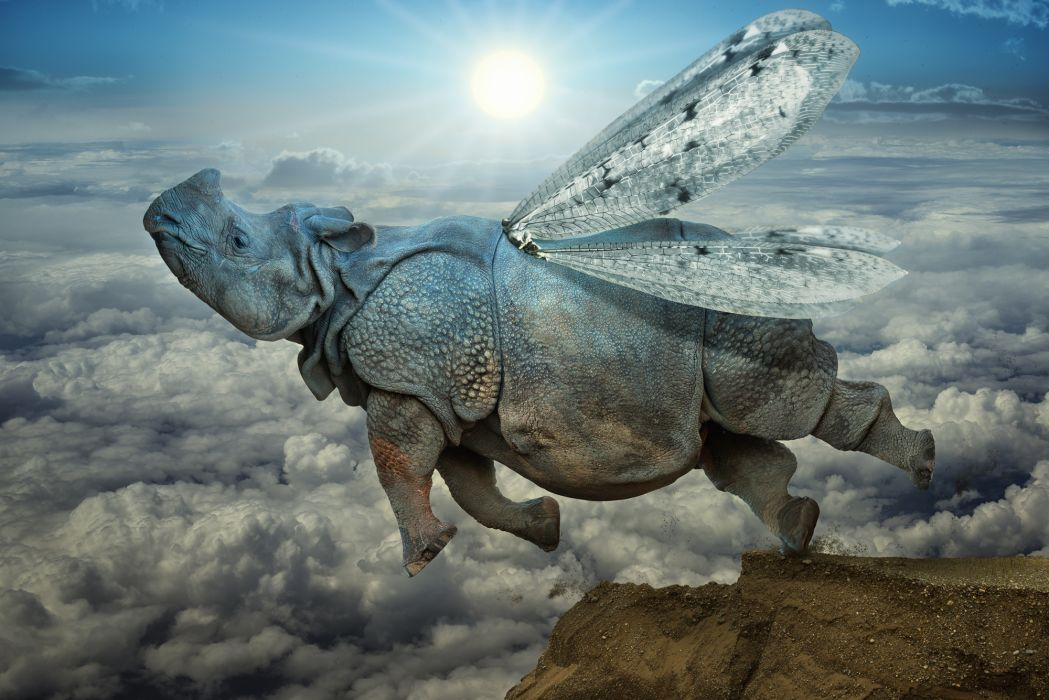 rhino jump wings clouds psychedelic wallpaper