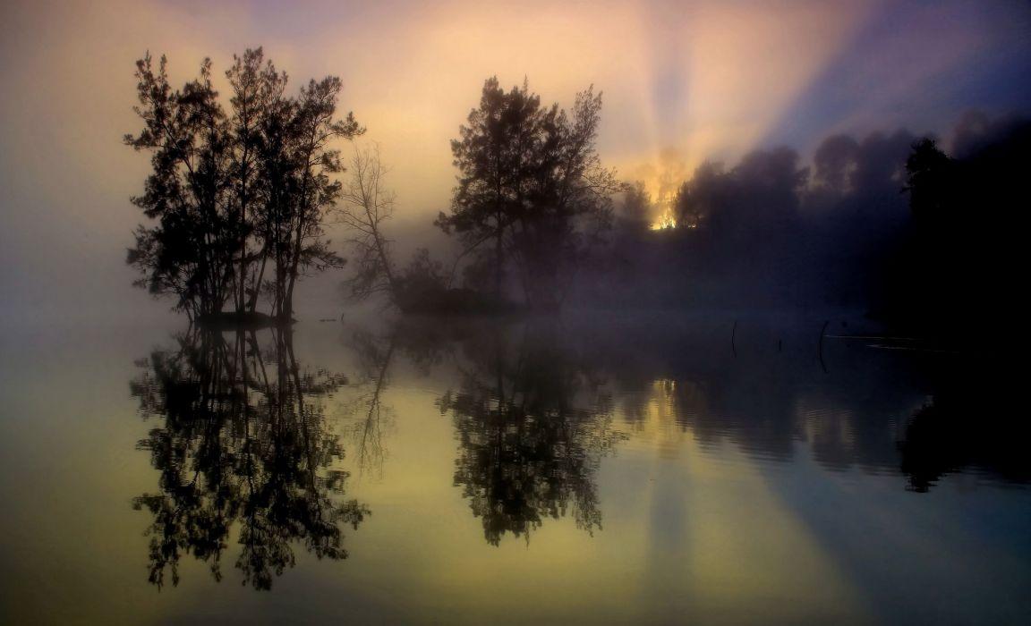 fog trees lake reflection morning sunrise wallpaper