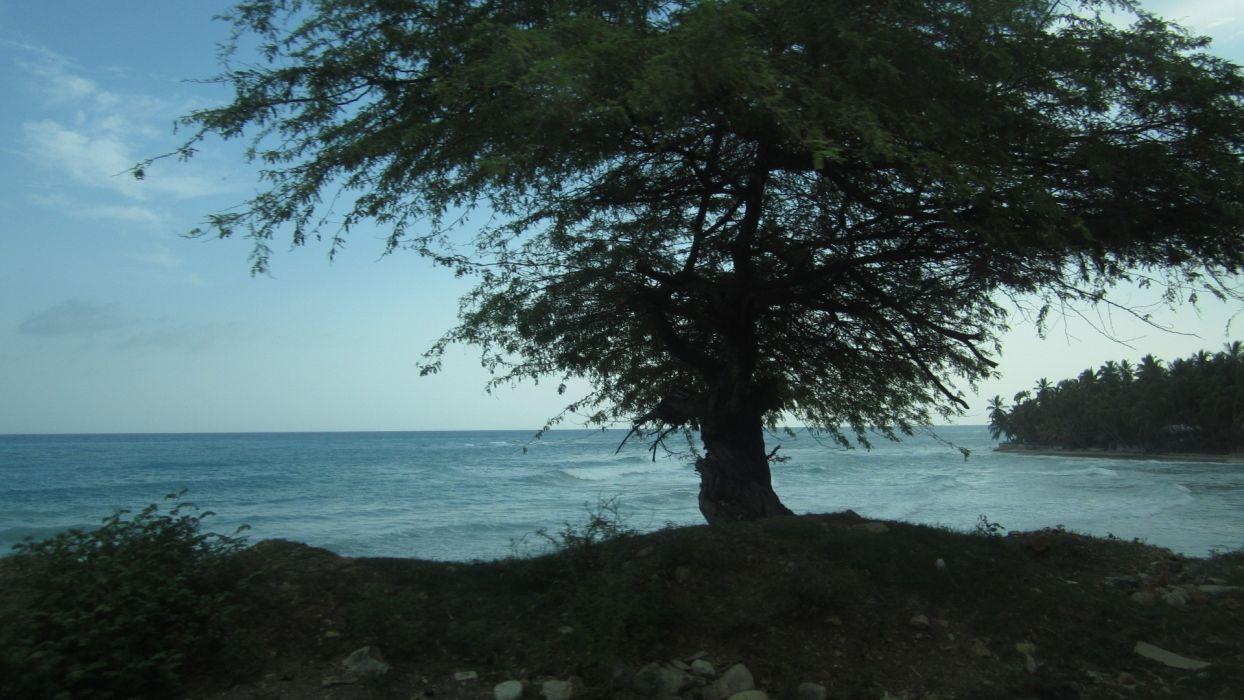 Landscapes Haiti Caribbean Sea Beaches Wallpaper