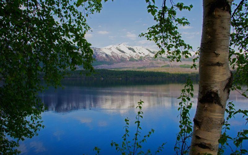 lake mountain birch branches landscape wallpaper