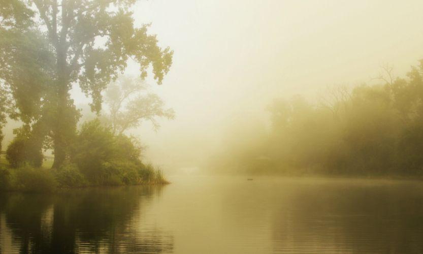 summer fog lake morning forest mood wallpaper