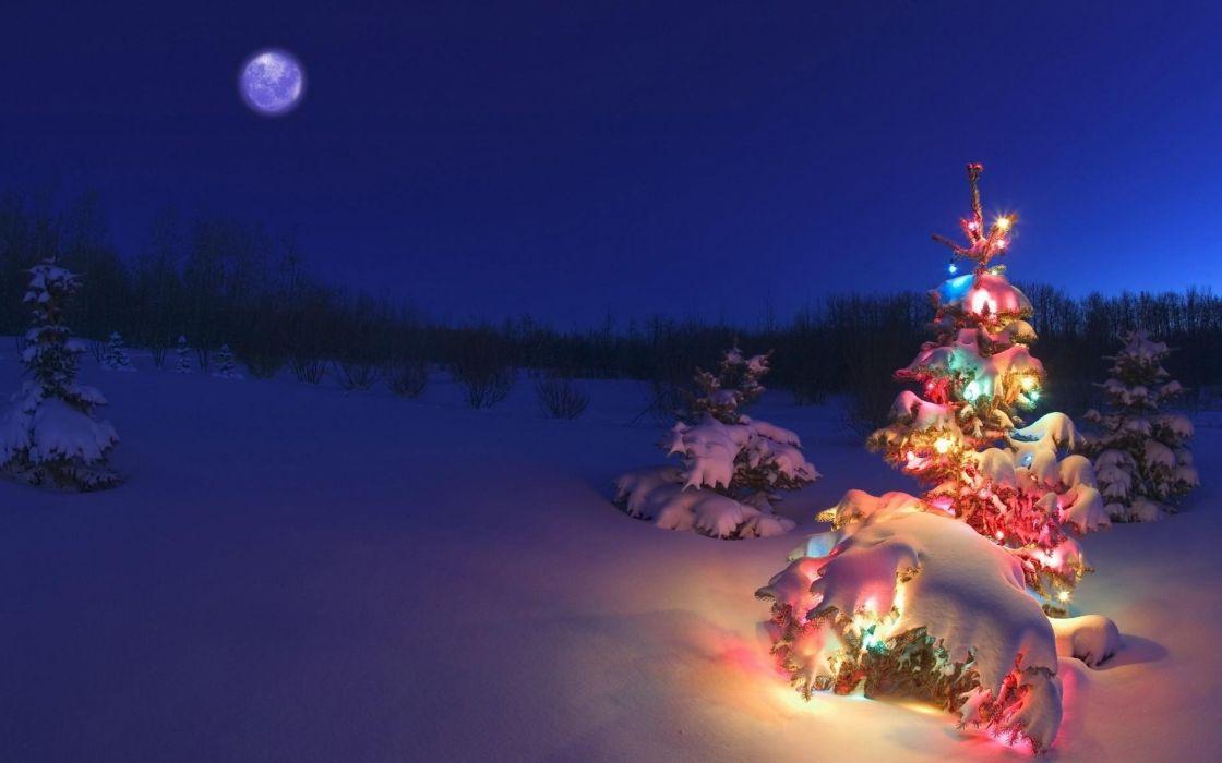 winter night moon christmas tree garlands nature wallpaper