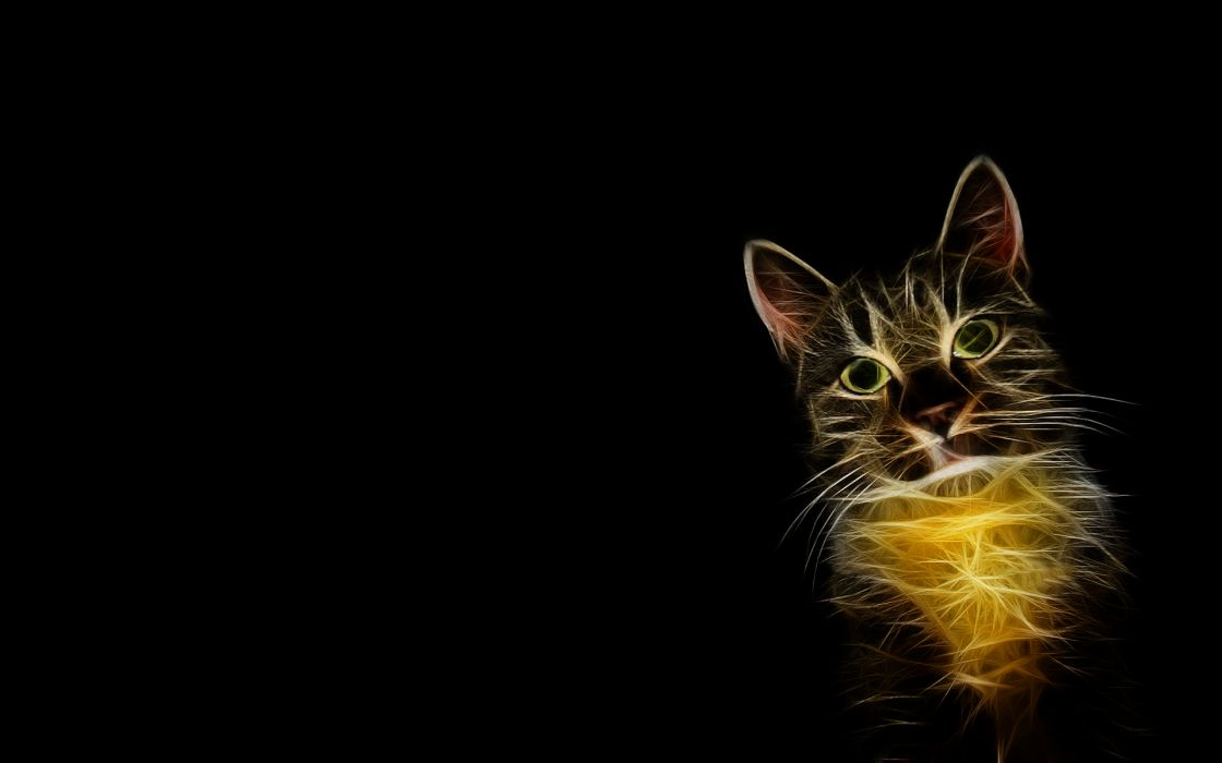 cats Fractalius simple background wallpaper
