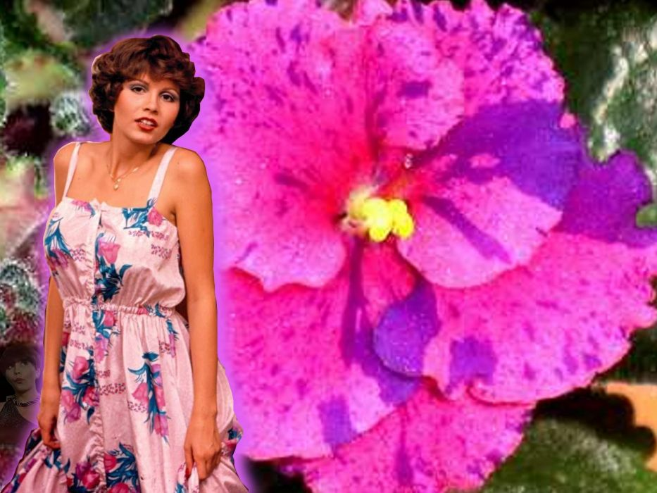 women flowers wallpaper