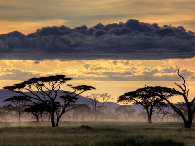 clouds landscapes Serengeti wallpaper