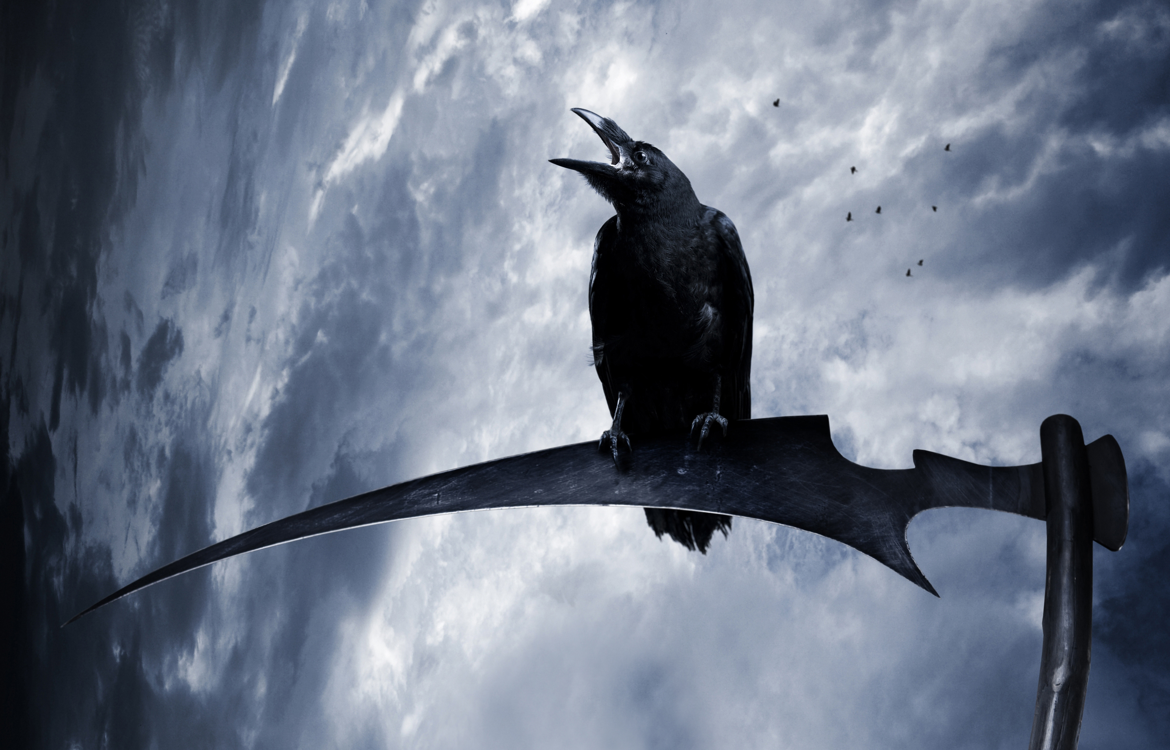 gothic crows sky braid hair fantasy reaper scythe f