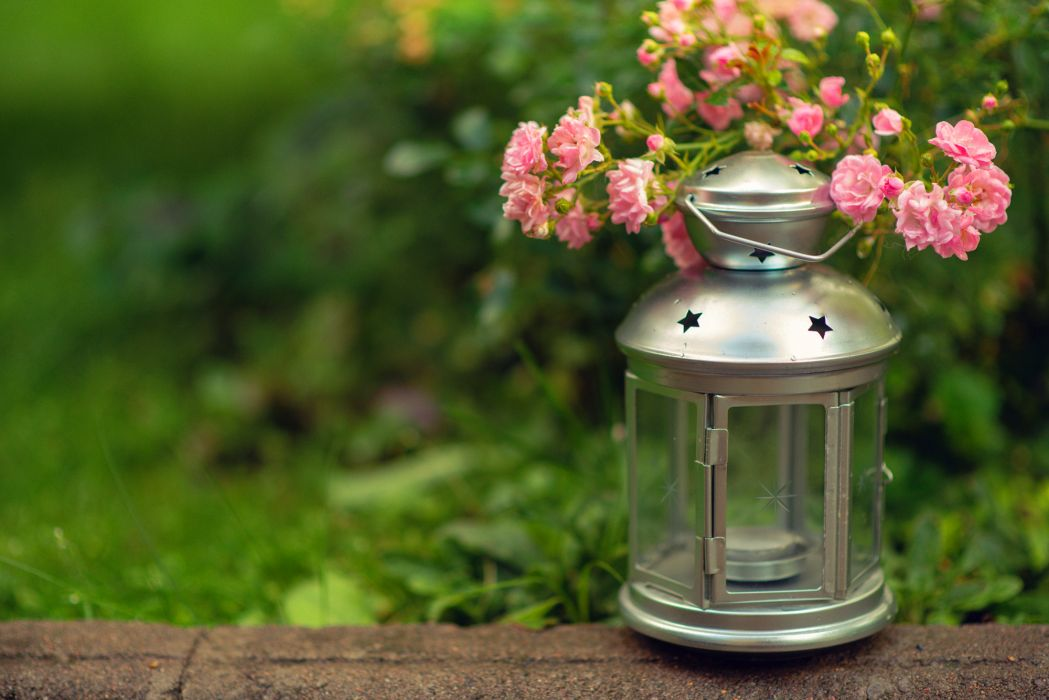 lantern flashlight candle flowers pink grass green blur bokeh wallpaper