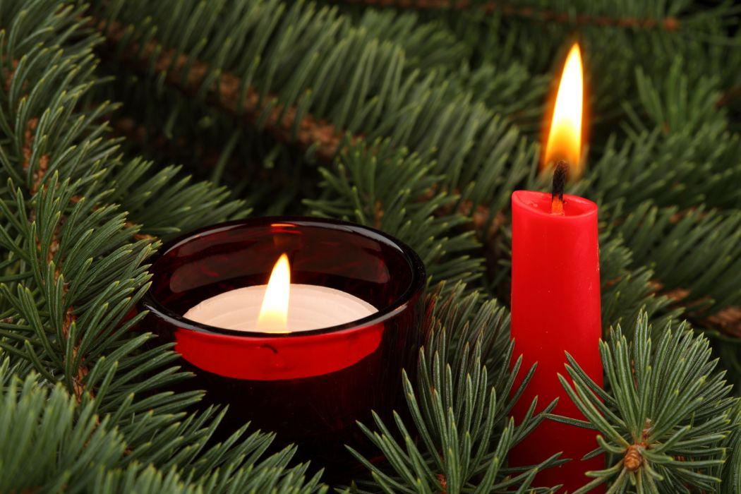 Candles Closeup Christmas tree Branches wallpaper