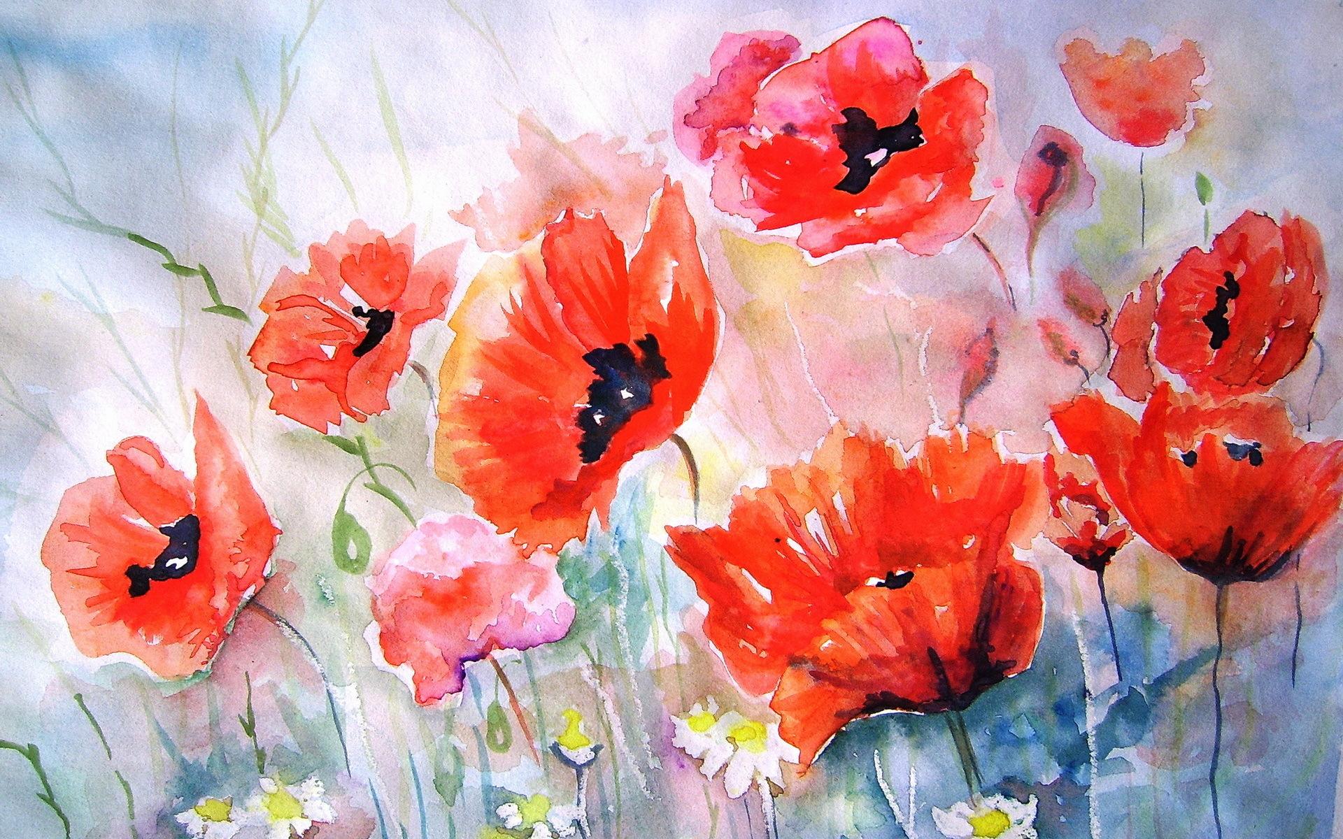 poppies flower art painting bokeh wallpaper backgroundPoppies Watercolor Painting