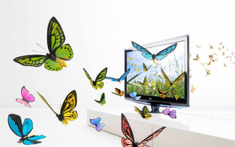 fantasy multicolor artwork butterflies wallpaper