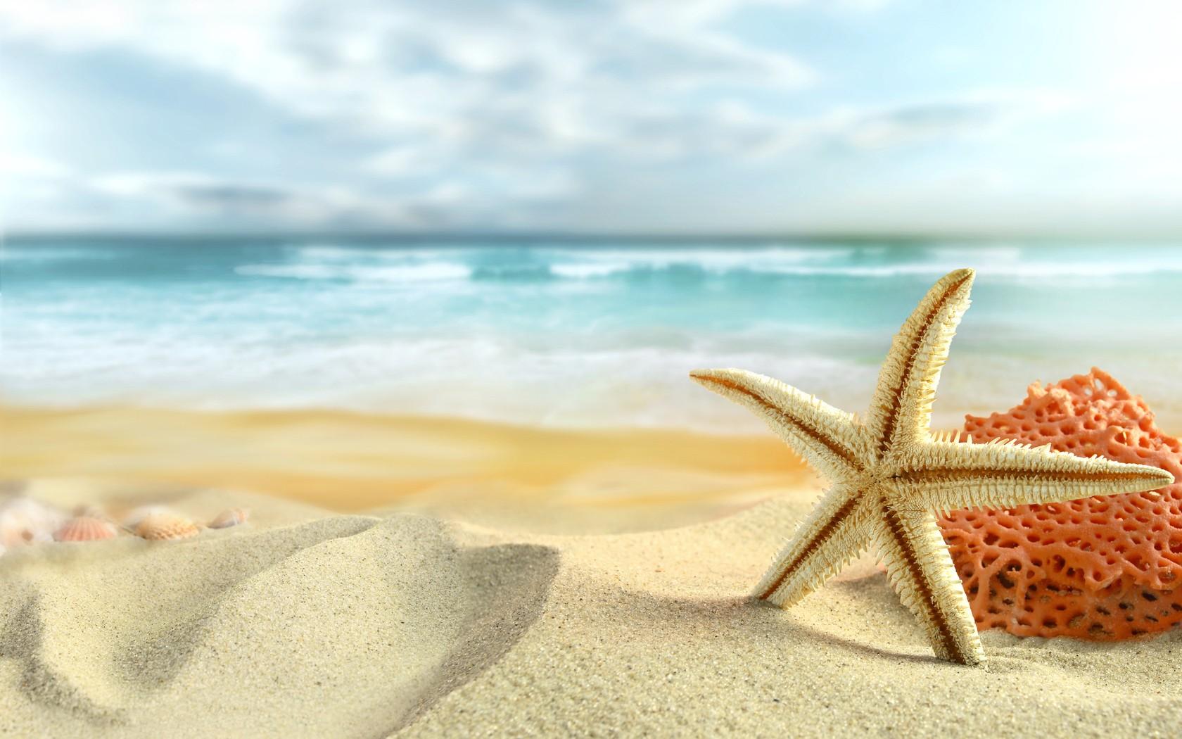 Ocean sand stars starfish sea beaches wallpaper | 1680x1050 | 184243 ...: www.wallpaperup.com/184243/ocean_sand_stars_starfish_sea_beaches.html