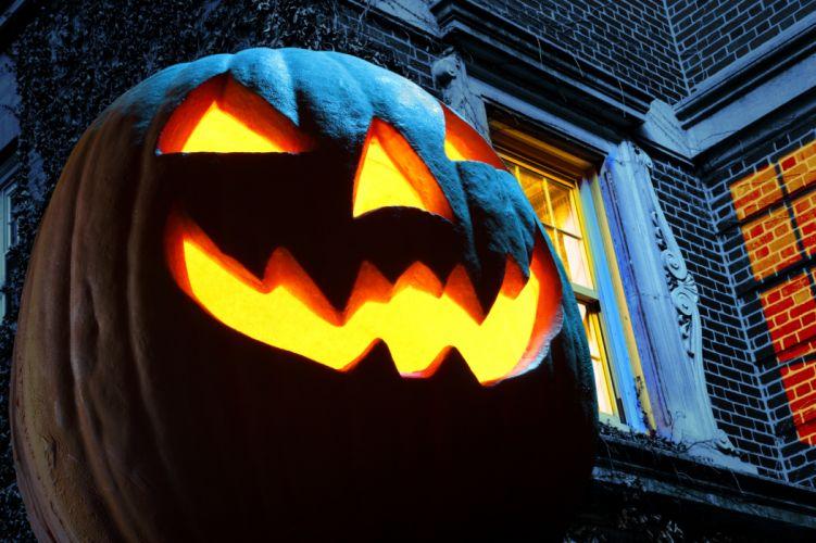 Halloween pumpkin f wallpaper