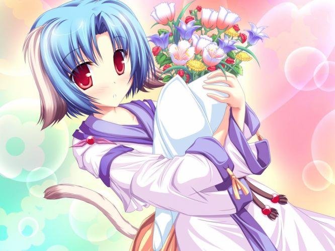 women flowers nekomimi blue hair animal ears red eyes anime bouquet wallpaper