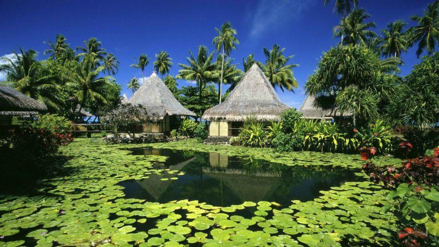 French Polynesia Tahiti huts lily pads wallpaper