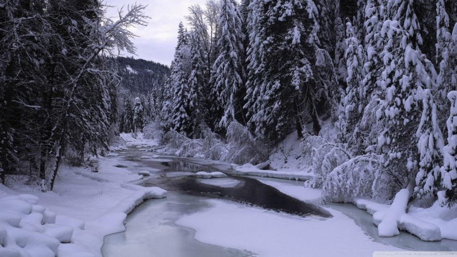 nature winter seasons wallpaper