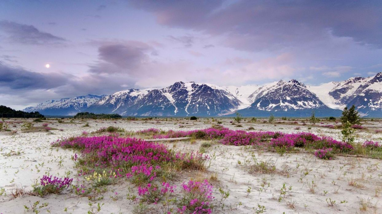 mountains Alaska wallpaper
