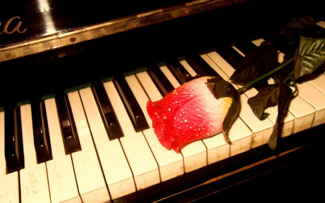 piano roses wallpaper
