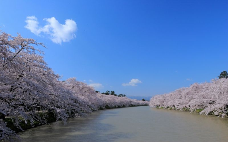 water Japan blossoms rivers skyscapes wallpaper