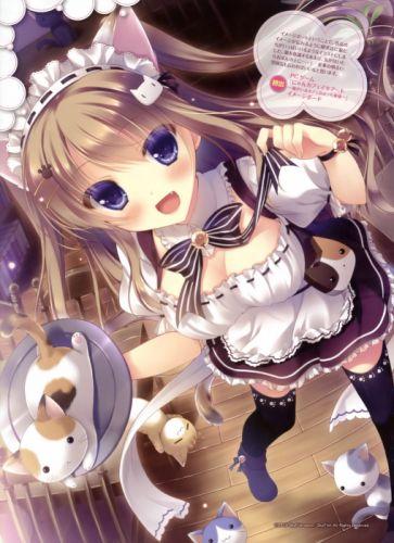brunettes tails cats blue eyes long hair nekomimi waitress animal ears anime girls scans Nyan Cafe Macchiato Mike Nekomori wallpaper